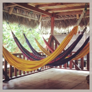 amazon hammock
